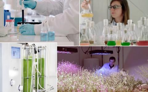 labo_biotech